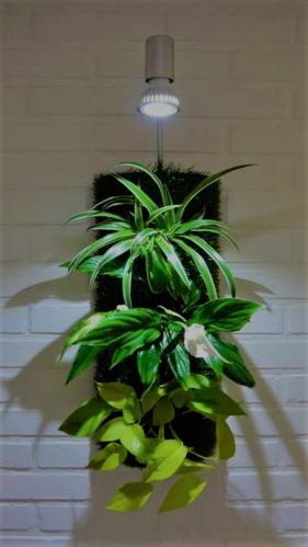 Nature verticale: cadres et meubles végétalisés