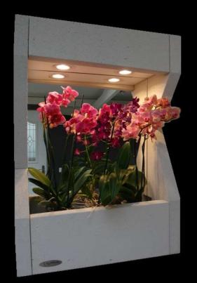 cadre à orchidées